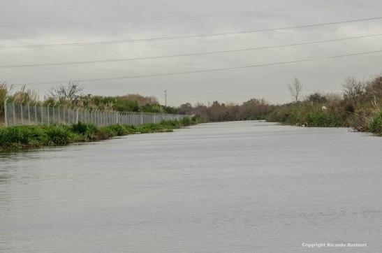 En el 2015, los vecinos del country alambraron hasta el Arroyo Garín. Foto: Ricardo Barbieri, El Tigre Verde