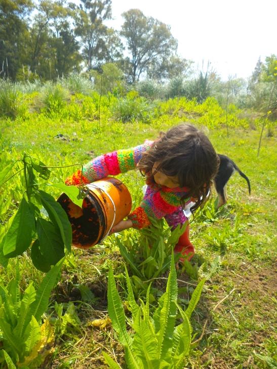 Los niños colaboran: hay que regar y hablarle a las plantitas.