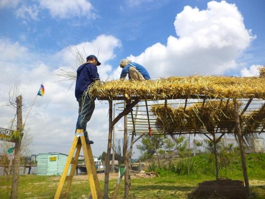 Construcción del techo del quincho con paja brava de Punta Querandí.