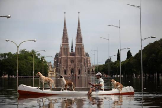 basilica-y-perros
